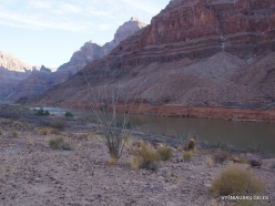 Grand Canyon. West Rim. Helicopter and Boat Tour. The bottom of canyon (8)