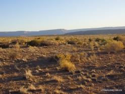 Near Grand Canyon. West Rim. Desert (3)