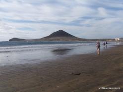 Near El Medano. Playa del Médano (7)