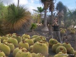 Near Los Christianos. Cactus park (20)
