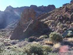 Teide National Park (4)