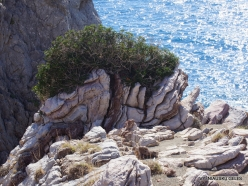 Agios Pavlos. Apoplýstra (16)