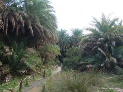 Preveli gorge (9)