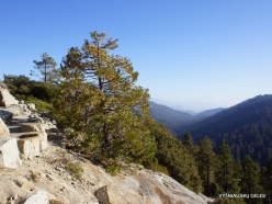 Kings Canyon National Park (13)
