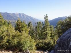 Kings Canyon National Park (18)