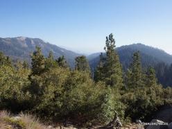 Kings Canyon National Park (3)