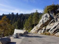 Kings Canyon National Park (5)