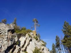 Kings Canyon National Park (6)