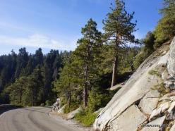 Kings Canyon National Park (7)