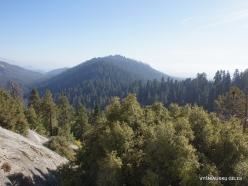 Kings Canyon National Park (8)