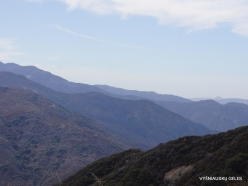 Sequoia National Park (11)