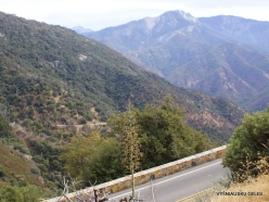Sequoia National Park (8)