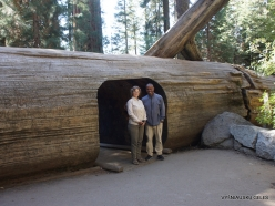 Sequoia National Park. With our gide Mark