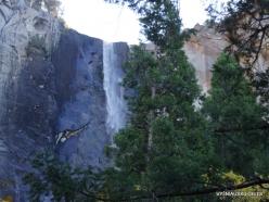Yosemite National Park. Bridalveil Fall (2)