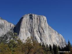 Yosemite National Park. Granite monolith El Capitan (3)