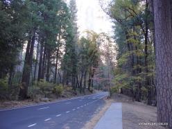 Yosemite National Park. Yosemite Valley (4)