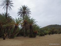 Vai Beach (1)