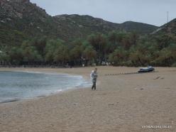Vai Beach. Cretan Date Palm (Phoenix theophrasti) (17)