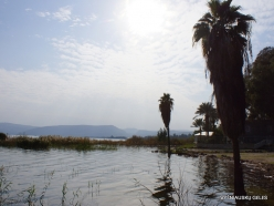 Tabgha. Sea of Galilee (Lake Tiberias, Kinneret) (3)