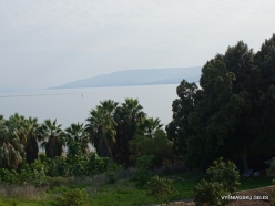 Tabgha. Sea of Galilee (Lake Tiberias, Kinneret)