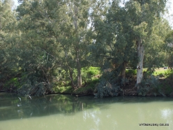 Yardenit. Jordan River (3)