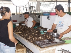 Guayaquil. Caraguay market. (20)