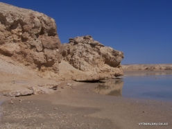 Ras Mohammed national park (4)