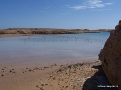Ras Mohammed national park (5)