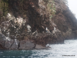 Floreana Isl. Devil's Crown. (11)
