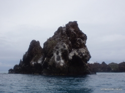 Floreana Isl. Devil's Crown. (2)