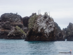 Floreana Isl. Devil's Crown. (20)