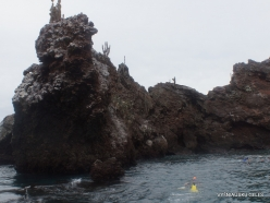 Floreana Isl. Devil's Crown. (28)