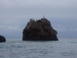 Floreana Isl. Devil's Crown. (3)