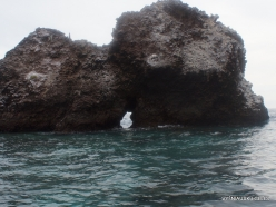 Floreana Isl. Devil's Crown. (39)