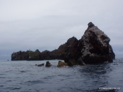 Floreana Isl. Devil's Crown. (4)