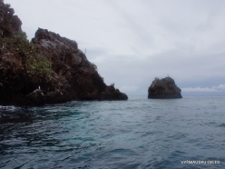 Floreana Isl. Devil's Crown. (43)