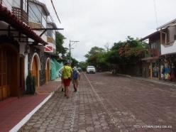 Santa Cruz Isl. Puerto Ayora. (2)