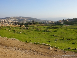 Jerash. Greco-Romanian city of Gearsa (9)