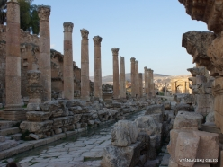Jerash. Greco-Romanian city of Gearsa. Cardo Maximus (3)