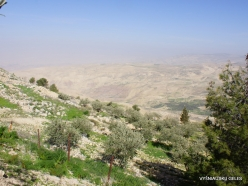 Mount Nebo. Wiew from Mount Nebo (13)