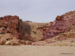 Petra. Ancient City (8)