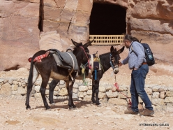 Petra. Centre of city (5)
