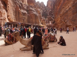 Petra. Centre of city (7)