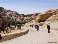 Petra. Road to the ancient city (7)