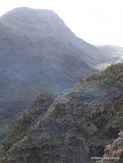 La Gomera. Near Hermigua. (7)