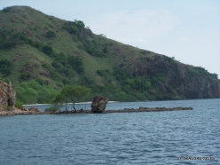 1 Komodo National Park. Rinca island (2)