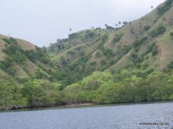 1 Komodo National Park. Rinca island (4)