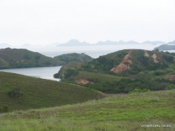 1 Komodo National Park. Rinca island (9)