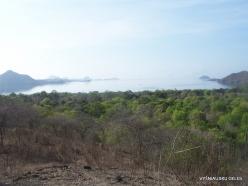 Komodo National Park. Komodo island (10)
