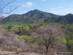 Komodo National Park. Komodo island (11)